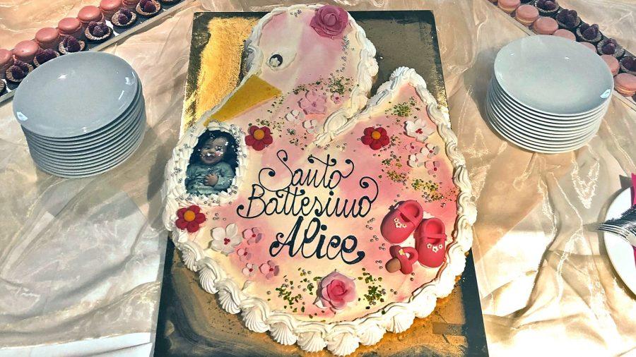 pasticceria-acquario-torta-battesimo-forme-cicogna